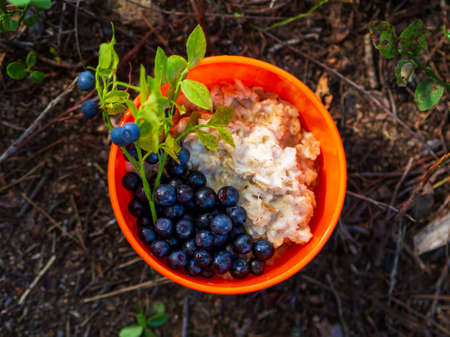 Oatmeal with blueberries in an orange plate on the nature in the forest. Hiker's breakfast.
