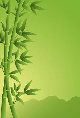 arrière-plan de bambou