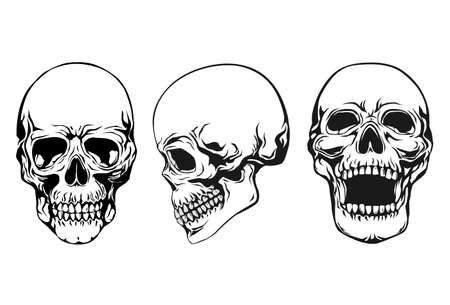 skull set Stock Vector - 9934604