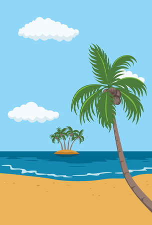 caribbean beach: tropical beach with palm tree