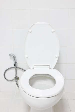 toilet seat: toilet