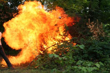 fireside: fire flames