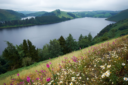 tributary: Llyn Clywedog Reservoir near Llanidloes Powys Wales