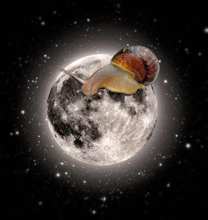 moonwalk: big snail walking on moon