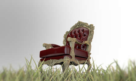 regal armchair on green grass photo