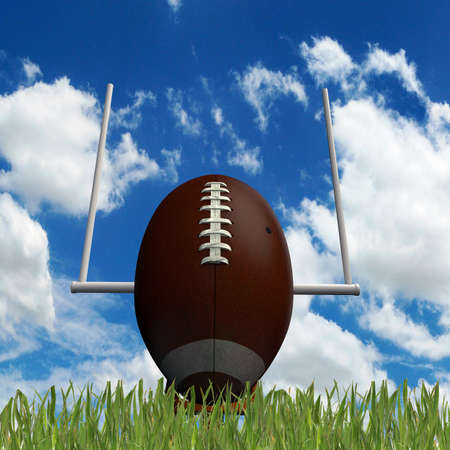 football ball on green grass photo