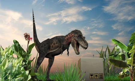alarming: CuriousTarbosaurus inspecciona una caja de cart�n en la hierba verde