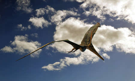 enormous: Pteranodon flying in the sky