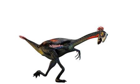 공룡 Gigantoraptor