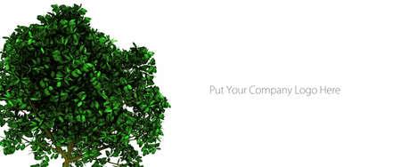 botanist: gardening company business card isolated on white background
