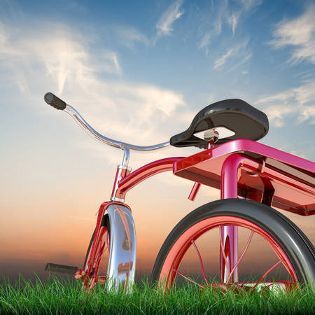 red tricycle on green grass
