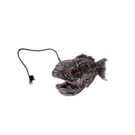 deep sea fishing: lantern fish isolated on white background