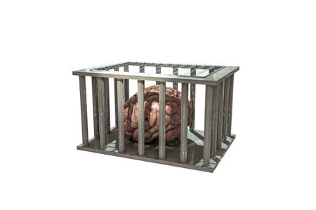 caged: brain in a cage isolated on white background Stock Photo
