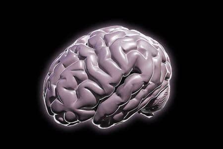 mentality: human brain isolated on black background