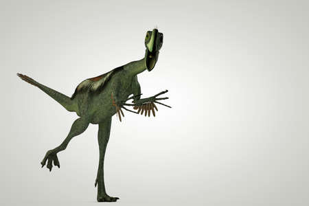 gigantic: 3d illustration of a gigantoraptor isolated on white background Stock Photo