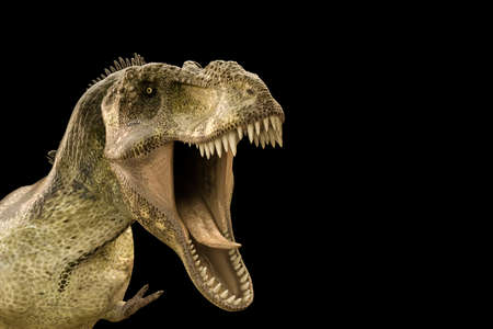 gigantic: 3d illustration of a Tyrannosaurus rex isolated on black background