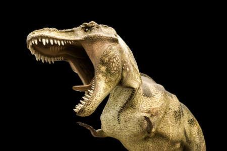 rex: 3d illustration of a Tyrannosaurus rex isolated on black background