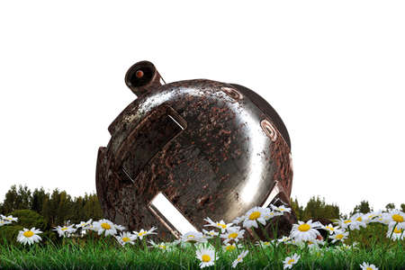 3d illustration of a space capsule landed on a green field