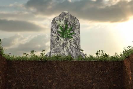 marijuana tombstone placed on a empty grave 3d illustation
