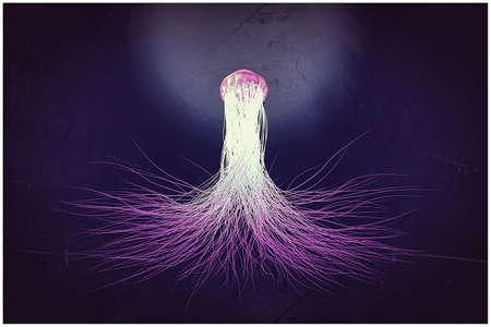 jellyfish floating in dark water 3d illustration Stock fotó
