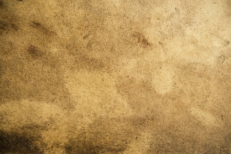 Abstract background of the grainy texture of old leather with a mottled stained appearance and rough texturing Stock Photo - 15471768