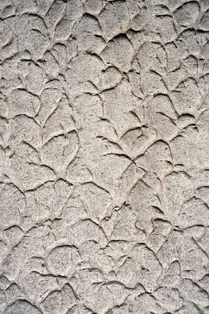 Abstract background with a dirty textured wall with a random raised plaster pattern Stock Photo - 16185569
