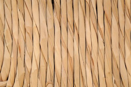 fibres: Abstract background of twisted natural fibres arranged in a parallel line