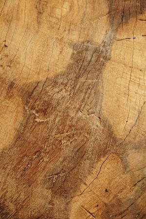 Recortable bordo wod y textura que muestra el detalle de las fibras, vetas de la madera y grietas