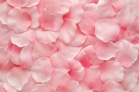 Backgorund texture of beautiful delicate pink rose petals in a random pile