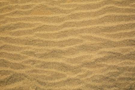 undulating: Abstract background of rippled beach sand with a grainy texture and an undulating wavy pattern
