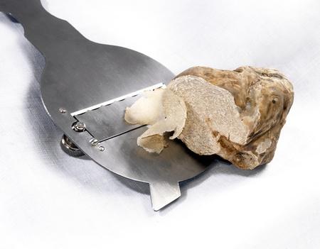 Rebanar una trufa blanca en l�minas finas con un cortador de acero inoxidable para el uso como un ingrediente gourmet sabor a los alimentos en la cocina Foto de archivo