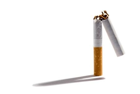 Cigarrillo con filtro partido en dos para mostrar la posici�n tabaco seco en posici�n vertical sobre un fondo blanco con una sombra y copyspace Foto de archivo