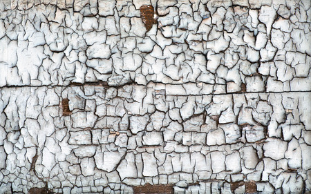 desiccated: Background texture and pattern of the surface of a grungy desiccated dried cracked wood board