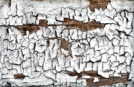 flaking: Background texture and pattern of flaking cracked dried weathered paint on an old wooden board