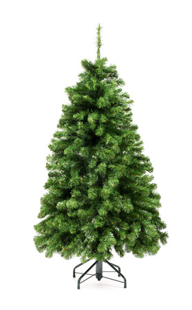 undecorated: Bare undecorated green Christmas tree