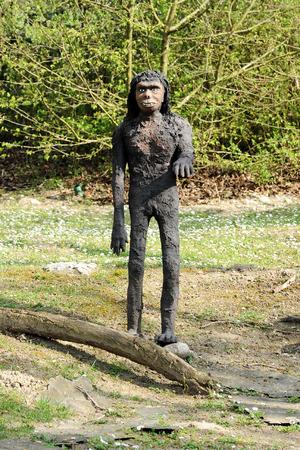 epoch: Vista frontale del modello di proconsole Africano, un estinto Ape dal Miocene, in piedi all'aperto nel parco a tema