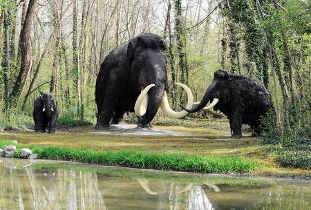 Modelos de Extinto Wooly Mammoth familia cerca de Water Edge en el tema Pre-Parque Hist�rico
