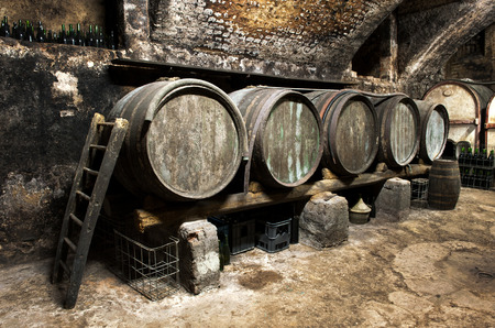 Interior of an old wine cellar at a winery with a row of wooden oak casks for fermentation of the wine and maturating arranged along one wall Archivio Fotografico