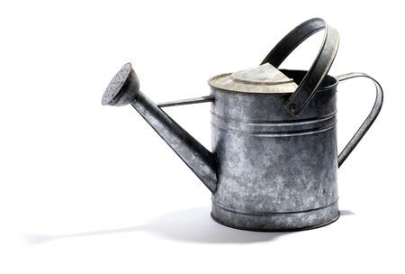 galvanised: Galvanised metal watering can with a double handle and spout for watering plants in the garden on white with shadow, side view