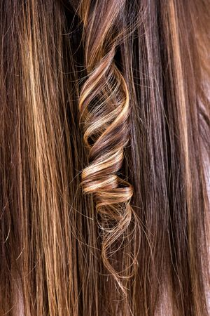 ringlet: Single curled ringlet in brown hair with colored highlights in a hairstyling, beauty and fashion concept