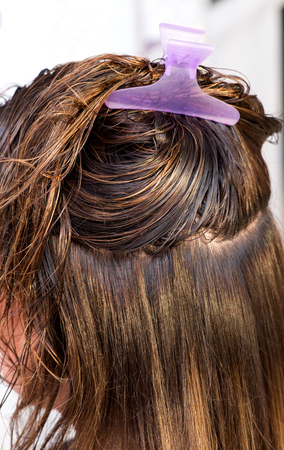 hair clip: Clean wet washed long brown hair of a woman client held up with a plastic purple hair clip in a hairdressing salon