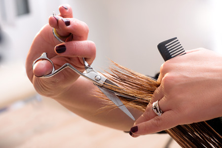 tijeras: Peluquería recorte los extremos en el cabello de un cliente con tijeras profesionales y un peine, vista de cerca de las manos Foto de archivo