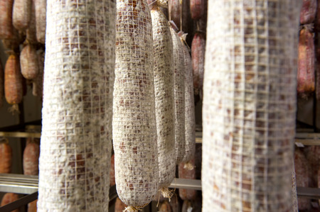 ageing: Close up on rows of ageing spicy Italian salami sausages hanging in a butchery during the curing and drying process