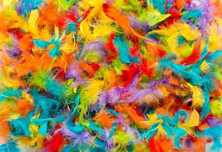 bird feathers: Colorful background of vivid brightly colored dyed soft fluffy bird feathers in the colors of the rainbow or spectrum for a festive background Stock Photo