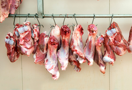 ageing: Multiple raw shin calf cuttings hanging from hooks on long rack in cooling room of meat processing plant