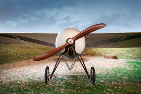 monoplane: Old vintage monoplane airplane with a wooden propeller parked in a field in a landscape, front view Stock Photo