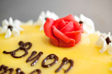 piped: Close Up Still Life of Piped Red Rose Icing on Top of Lemon Flavored Cake with Small White Flowers and Happy Wishes Written in Chocolate