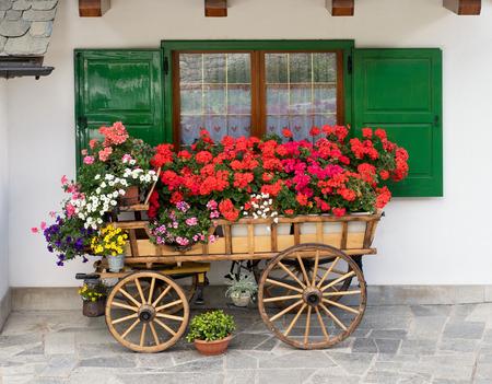 Dekorative hölzernen Wagen gefüllt mit bunten Sommerblumen und Topfpflanzen vor einem Fenster mit offenen grünen Fensterläden, die auf Steinpflaster