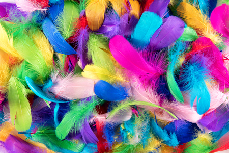 Background texture of brightly colored dyed bird feathers in the colors of the rainbow or spectrum in a random pile viewed from above in a full frame view Stock Photo