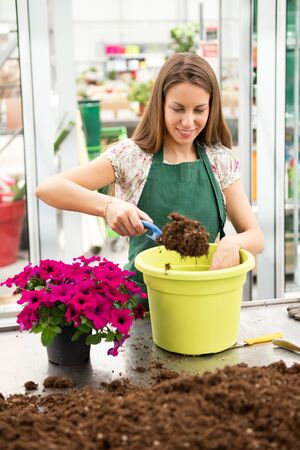 Young woman potting up a petunia plant placing soil in a green flowerpot with a small trowel from a heap on the table in a nursery in an employment concept
